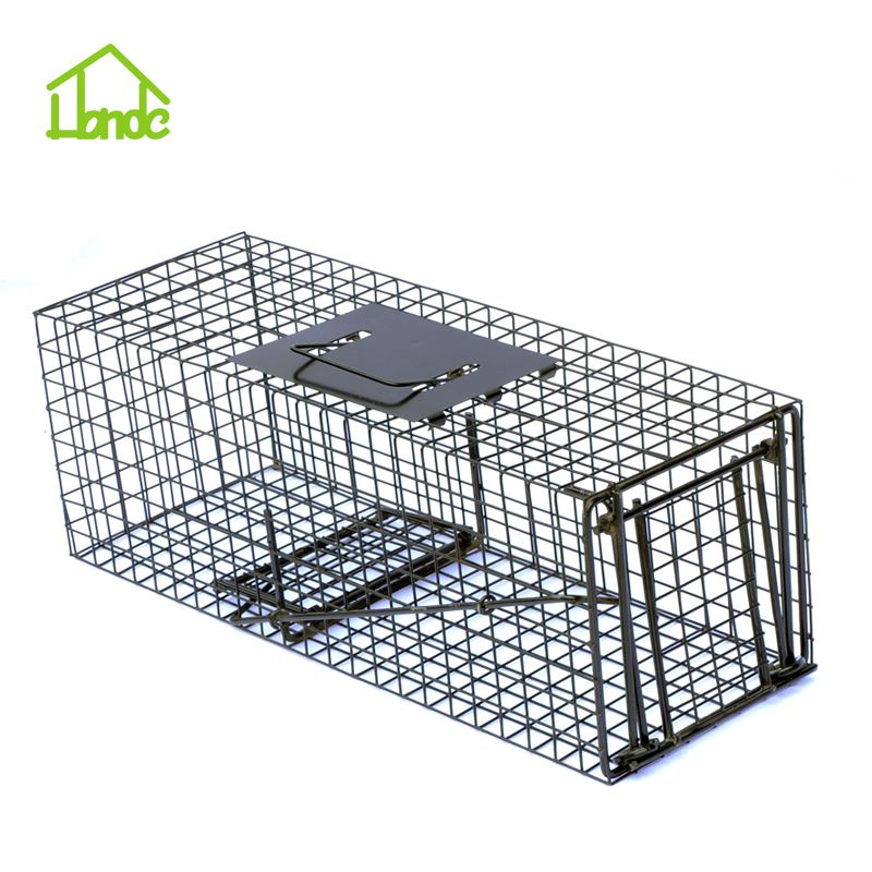 Repeating Live Squirrel Trap