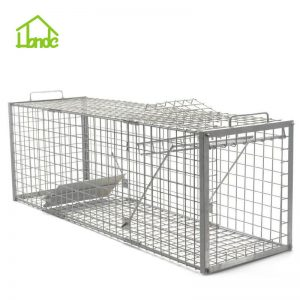 Cage To Trap Wild Hogs