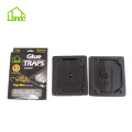 Mouse Glue Trap Boards UK
