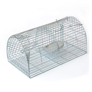 New Design Live Mouse Trap