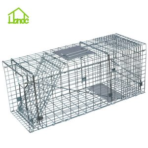Collapsible Cage Trap