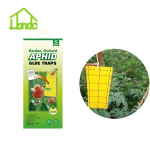 Aphid Glue Trap with Hooks