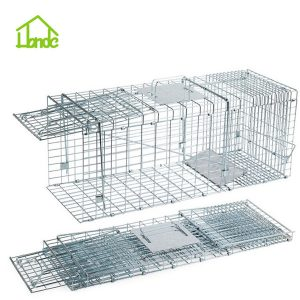 Folded Humane Live Animal Cage Trap